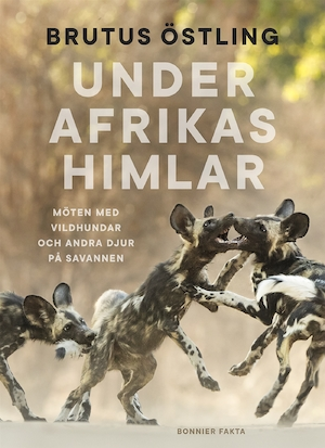 Under Afrikas himlar